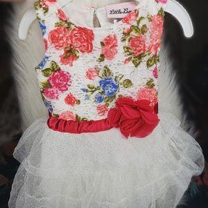 Fancy Floral Baby Dress w/ Bloomers